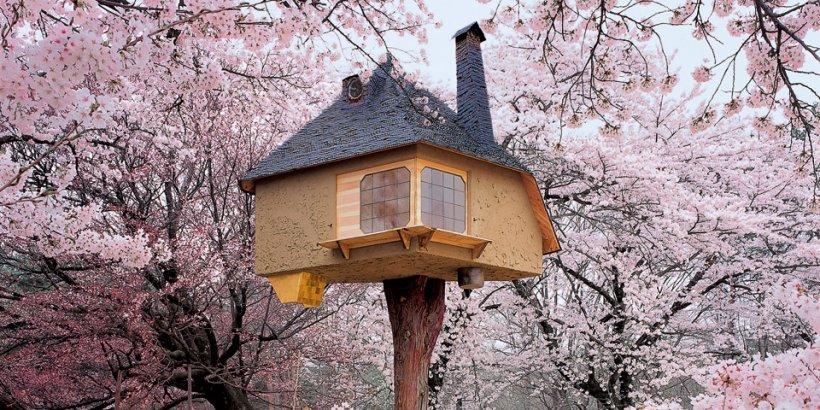 teaser va treehouses top 1210171459 id 5366001 18 Casas en los Árboles que te Harán Soñar